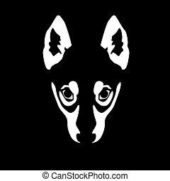 wolf, schwarzer hintergrund, abbildung, gesicht