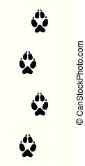 Wolf Tracks Black Footprints - Wolf tracks. Typical...