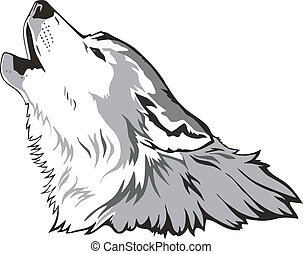 wolf, vektor, kopf