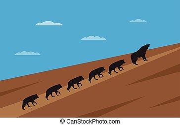 wolfes, concetto, direzione, pacco