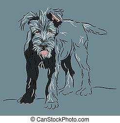 Wolfhound Puppy Standing