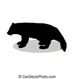 Wolverine Illustrations and Clipart. 344 Wolverine royalty ...