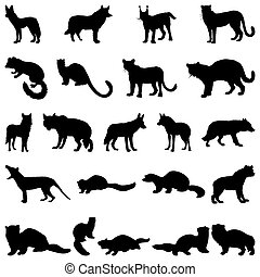 wolves and martens silhouettes set - Collection of wolves...
