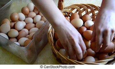 Woman adds eggs in wicker basket - Woman adds eggs in a...