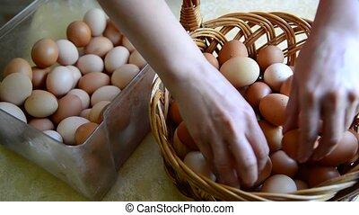 Woman adds eggs in wicker basket - Woman adds eggs in a...