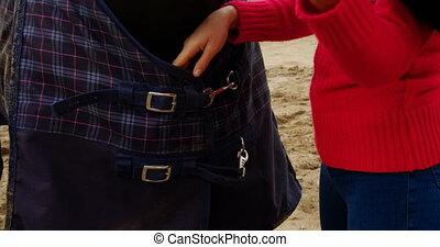 Woman adjusting belt of horse rug 4k - Young woman adjusting...