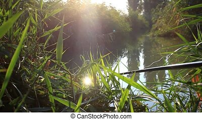 woman aged fished fish at pond in the morning on sunlight...