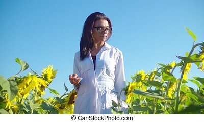 Woman agronomist examining plant in sunflower field - Pretty...