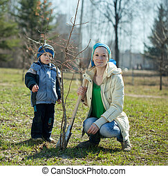 woman and boy planting tree - woman and boy with spade ...