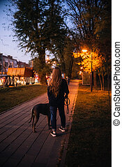 woman and her dog walking in the evening, rear view