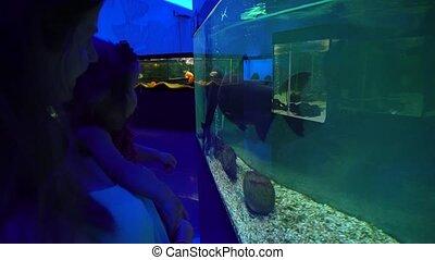 Woman and little daughter exploring exotic aquarium - Woman...