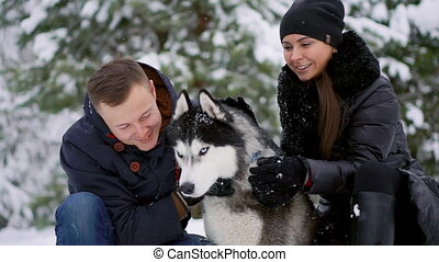 Woman and man play with dog in snow. - Woman and man play...
