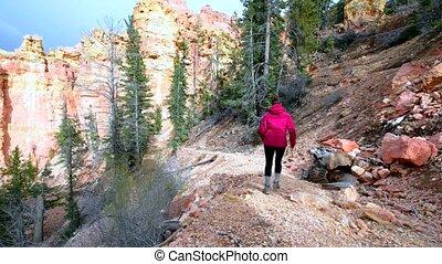 Woman Backpacker hiking down the Ponderosa Canyon Bryce...