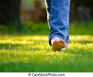 Woman Barefoot Legs on the Green Grass in Garden - Woman...