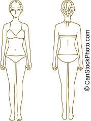 Woman body, model - woman body, model, vector file