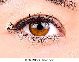 Woman brown eye close up