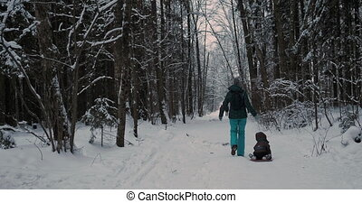 Woman carries child on sledge along path in winter forest. Outdoor leisure activity in cold snowy season.