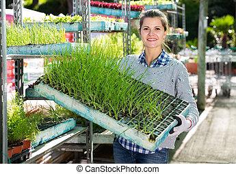 Woman checking seedlings in garden store