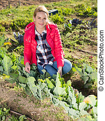 Woman checking seedlings of cabbage