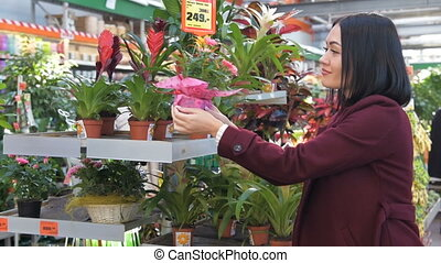 Woman chooses flowers in the store. Plants department in...