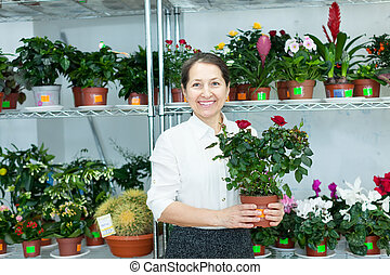woman chooses roses at flower store