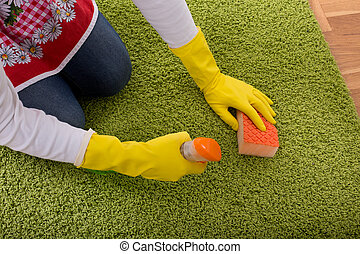 Woman cleaning carpet - Close up of female hands with...