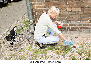 Woman Cleaning Dog Feces - Young Woman With Plastic Bag...