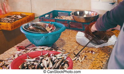 Woman Cleans and Cuts Fresh Fish in Fish Market. Manual...