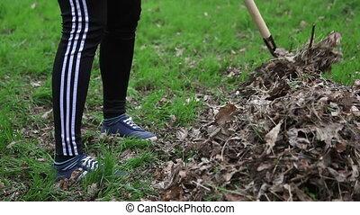 Woman cleans leaves rake.