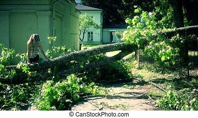 woman climbing over fallen tree on house yard entrance. 4K