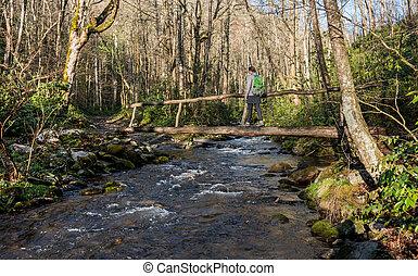 Woman Crosses Log Bridge in Early Spring