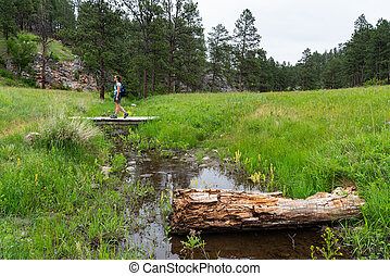 Woman Crosses Wooden Bridge Over Creek