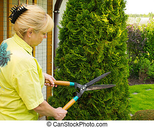 Woman cut bush clippers