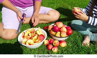 Woman cuts apples for jam - Woman with daughter cuts apples...