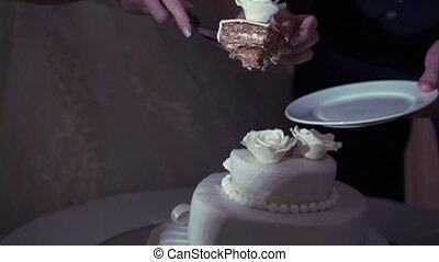 Woman cutting celebration cake