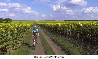 cyclist rides on blooming sunflowers field. slow motion -...