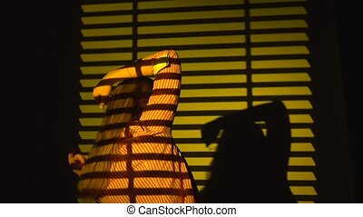 Woman dancing with her hands raised. Silhouette. Slow motion. Close up