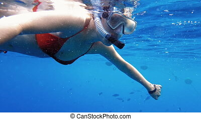 Woman dive underwater in snorkeling diving mask and snorkel...