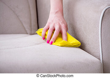 Woman doing cleaning at home