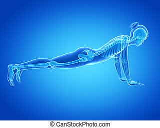 Woman doing pushups - medical 3d illustration - woman doing...