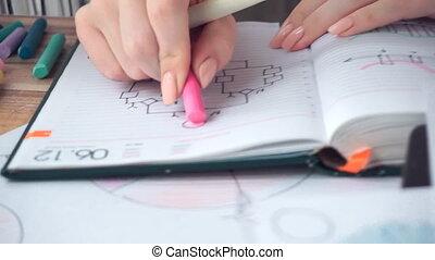 Woman drawing different business math graphs: flowchart, ...