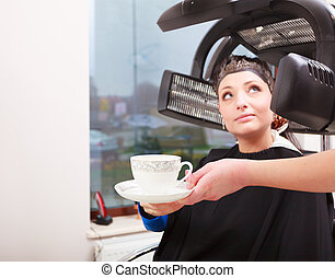 Woman dying hair in hairdressing beauty salon. Hairstyle.