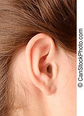woman ear