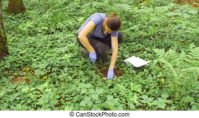 Woman ecologist taking samples of a soil - Woman scientist...