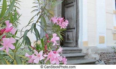 Woman Enters Old Door