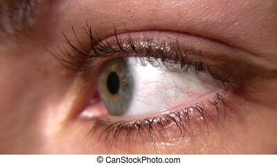woman eye macro - Woman eye macro