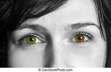 Woman eyes with the different colors