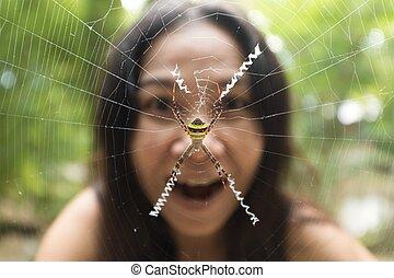 Woman face behind garden spider