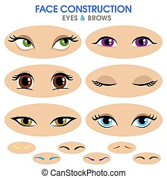Woman face constructor. Different eyebrows and eyes.