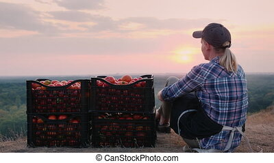 Woman farmer sitting near boxes with tomatoes, admiring the...